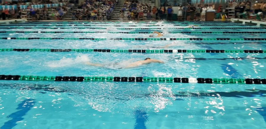 As the aquatic races intensify, the swimmers give it their all to finish.