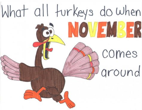 Every Turkey