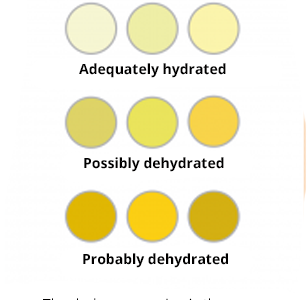 Know your hydration levels by using this helpful chart