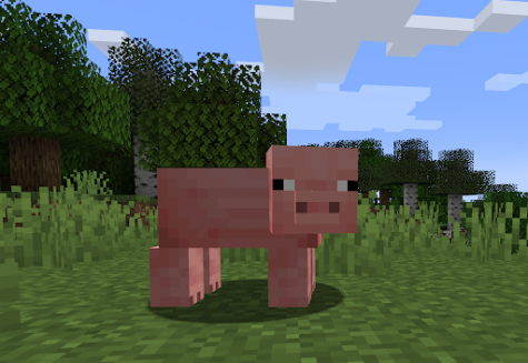 MINECRAFT: DID YOU KNOW...?